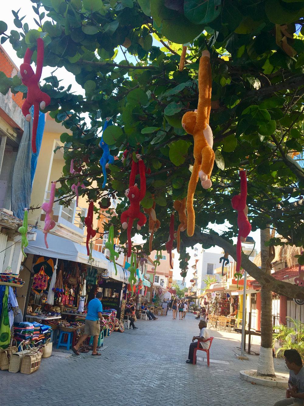 Hammocks_and_Ruins_Riviera_Maya_What_to_Do_Playa_Del_Carmen_Tulum_Islands_Isla_Mujeres_28.jpg