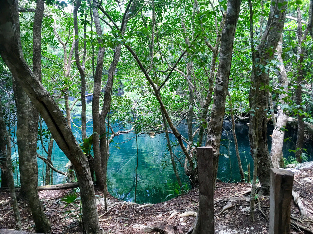 Hammocks_and_Ruins_Blog_Riviera_Maya_Mexico_Travel_Discover_Cenotes_Scuba_Dive_Cenote_Angelita_12.jpg