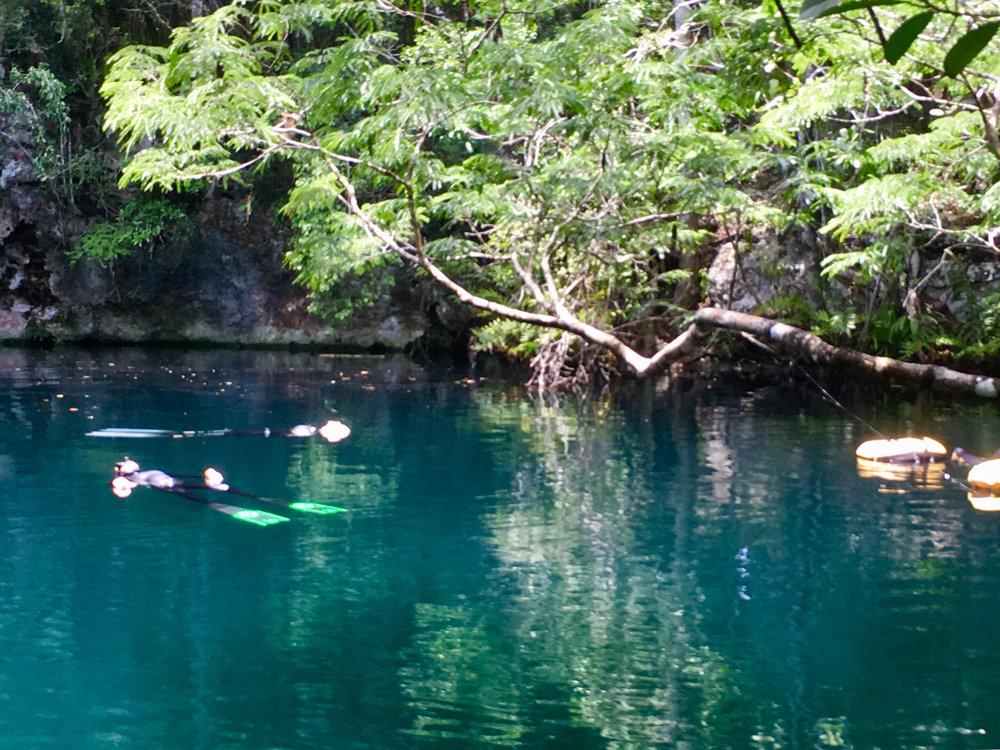 Hammocks_and_Ruins_Blog_Riviera_Maya_Mexico_Travel_Discover_Cenotes_Scuba_Dive_Cenote_Angelita_9.jpg