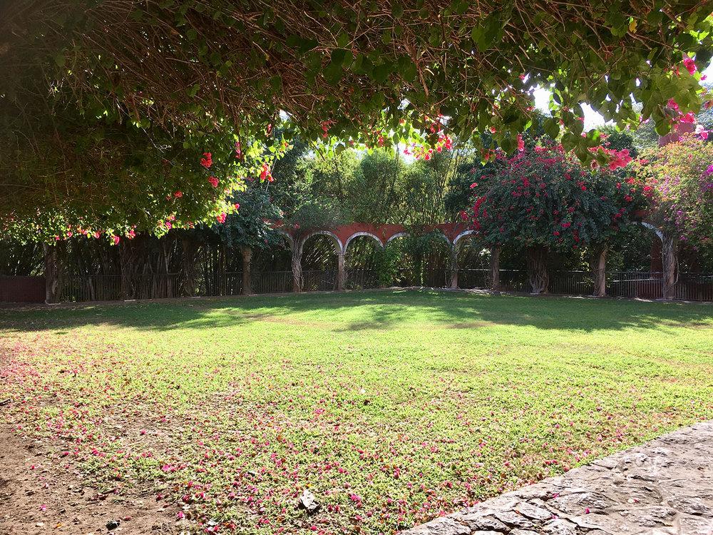 Hammocks_and_Ruins_Blog_Riviera_Maya_Mexico_Travel_Discover_Yucatan_What_to_do_Merida_Haciendas_Teya_36.jpg