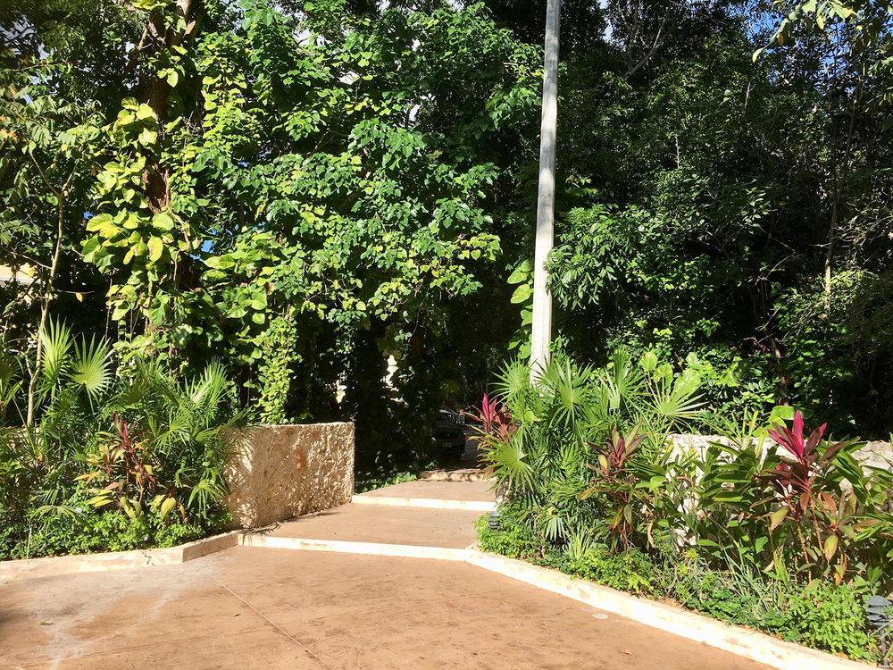 Hammocks_and_Ruins_Blog_Riviera_Maya_Mexico_Travel_Discover_Yucatan_What_to_do_Merida_Haciendas_Teya_49.jpg
