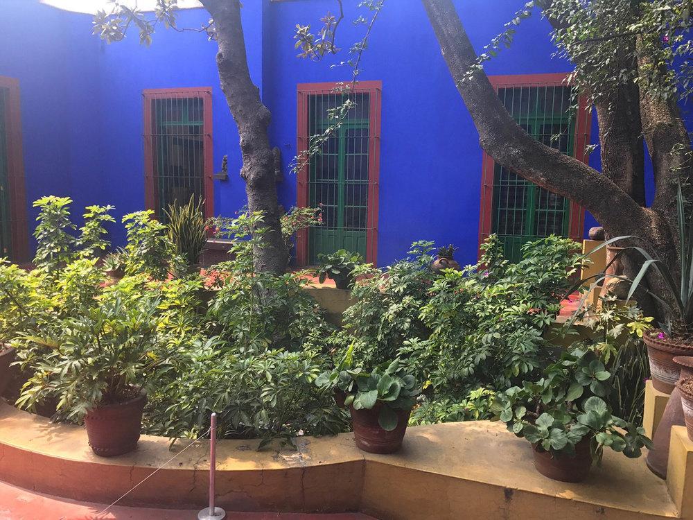 Hammocks_and_Ruins_Riviera_Maya_Mexico_Stories_Mayan_Mythology_Towns_Cities_What_to_Do_Mexico_City_Cuidad_Museums_Frida_Khalo_Blue_House_14.jpg