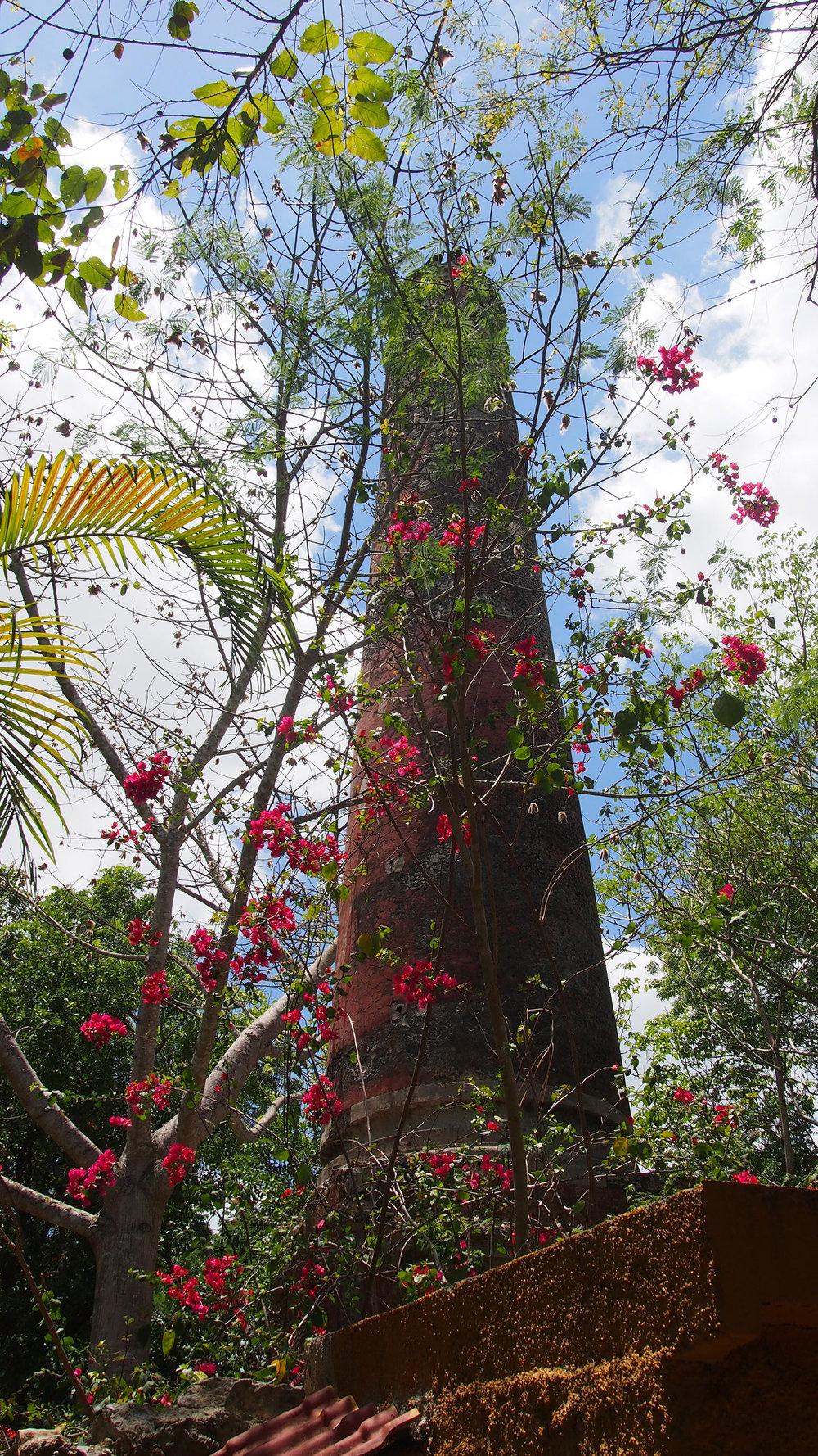 Each henequen hacienda had its signature chimney.
