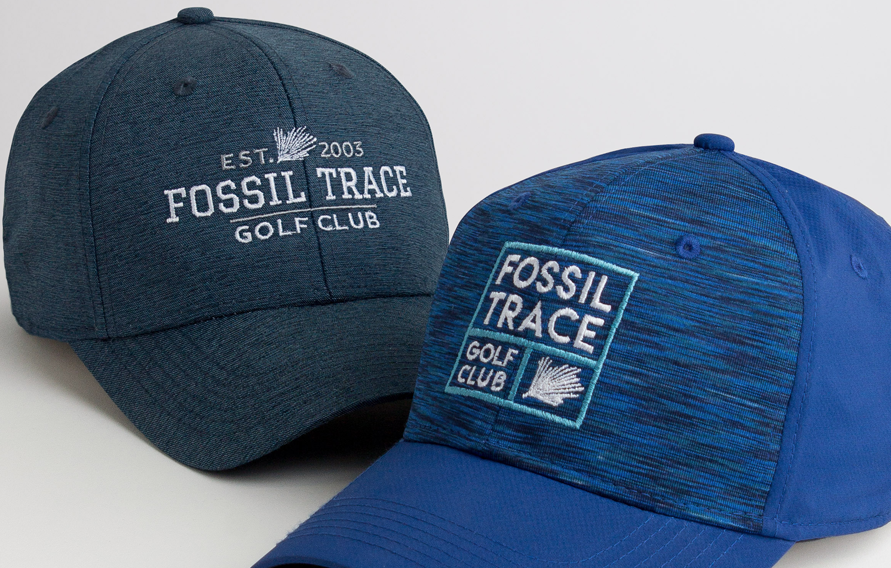 03_FOSSIL_TRACE.png