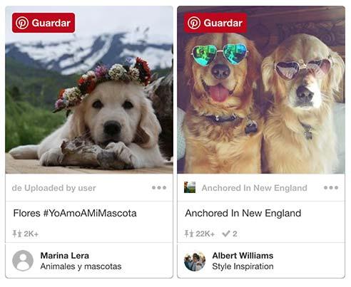 ejemplos_fotos_a_mascotas_movil.jpg