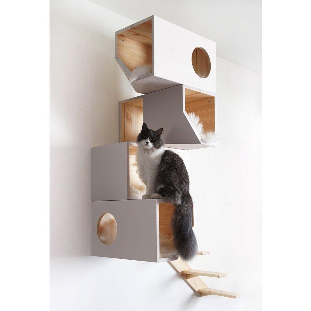 Cool cat tree jpeg