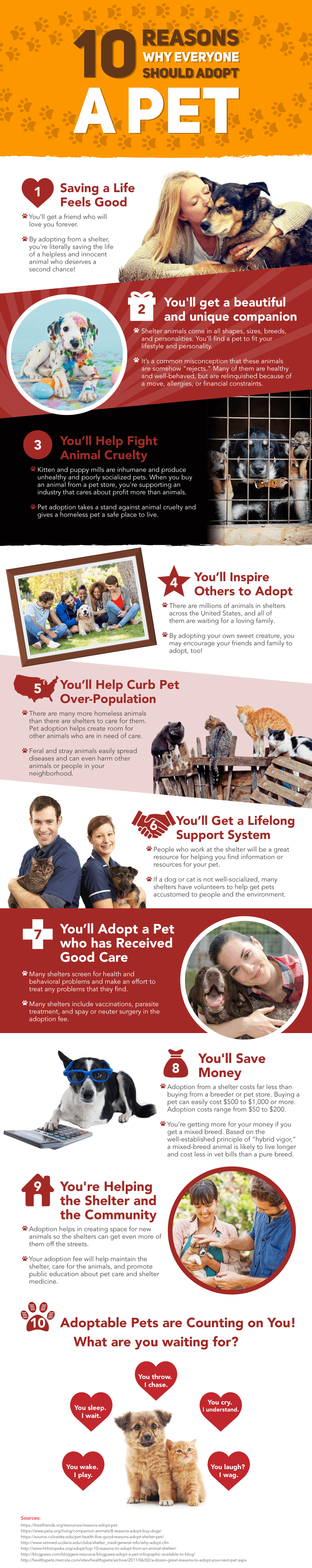 10-Reasons-To-Adopt-A-Pet.png