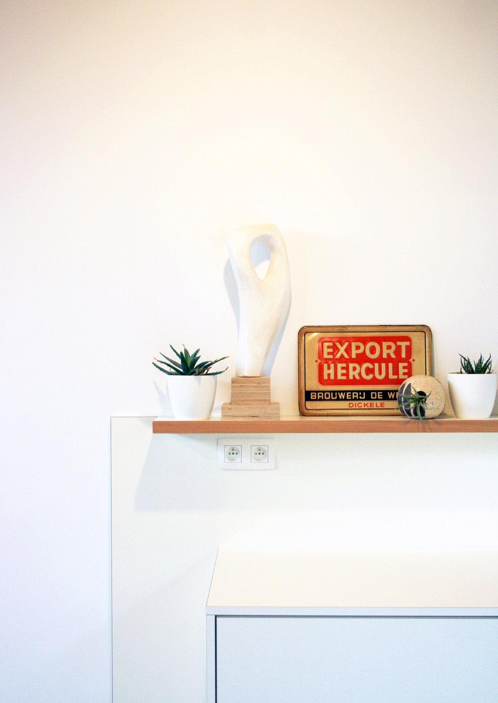 interieur plant wit Hercule keuken kast Studio ARBOR.jpg