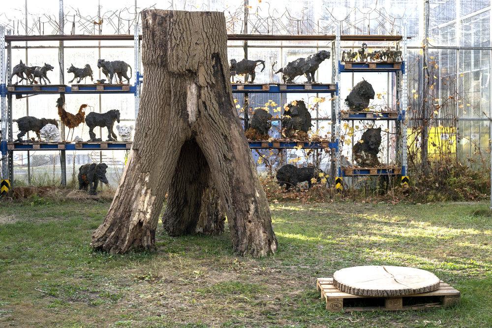Trinity Tree - Verbeke Foundation -
