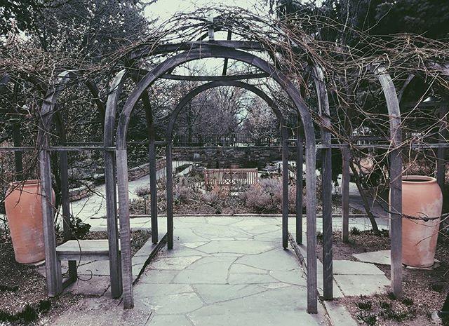 Denver botanic gardens makes awesome trellises ⠀ • • • #denverbotanicgardens #trellis #garden #plants