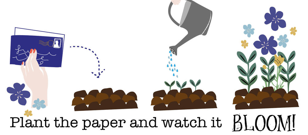 Plant-the-paper-for-Seed-page.jpg