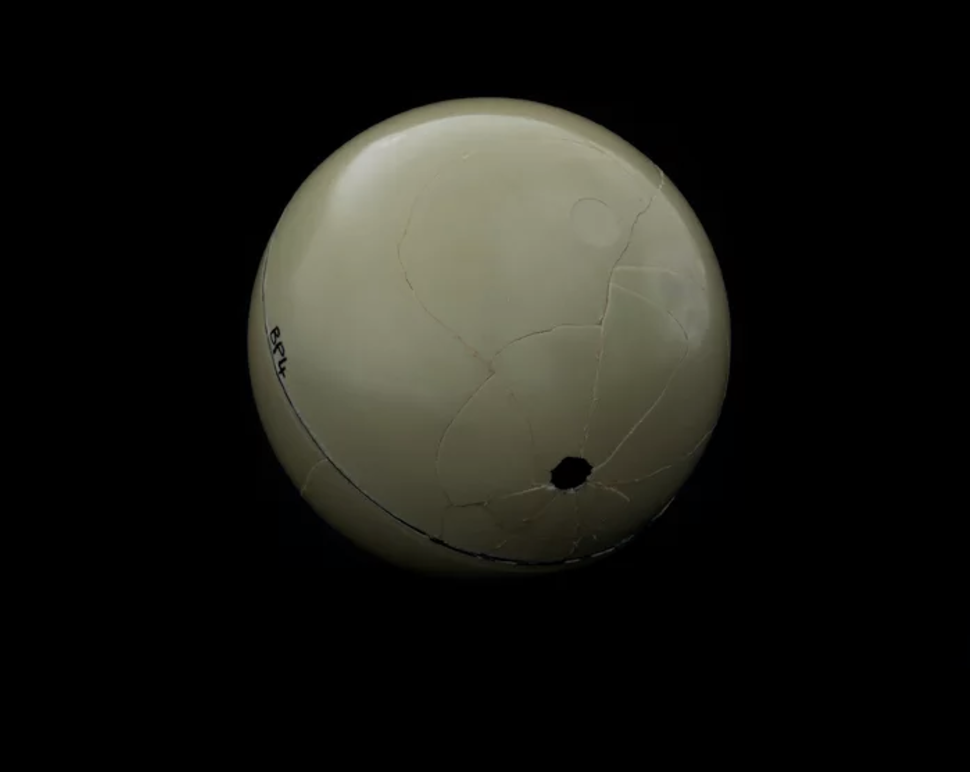Lieven Lefere,Skull BP4, 2016