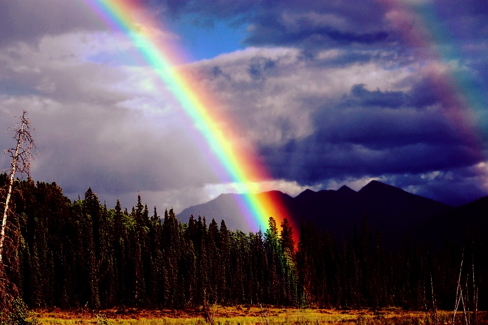 rainbow-436183_960_720.jpg