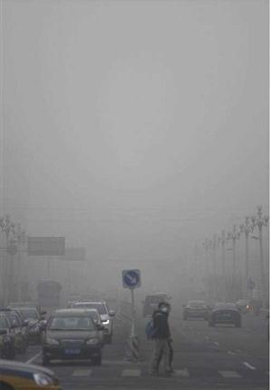 das_thetree_smogprogession4.png