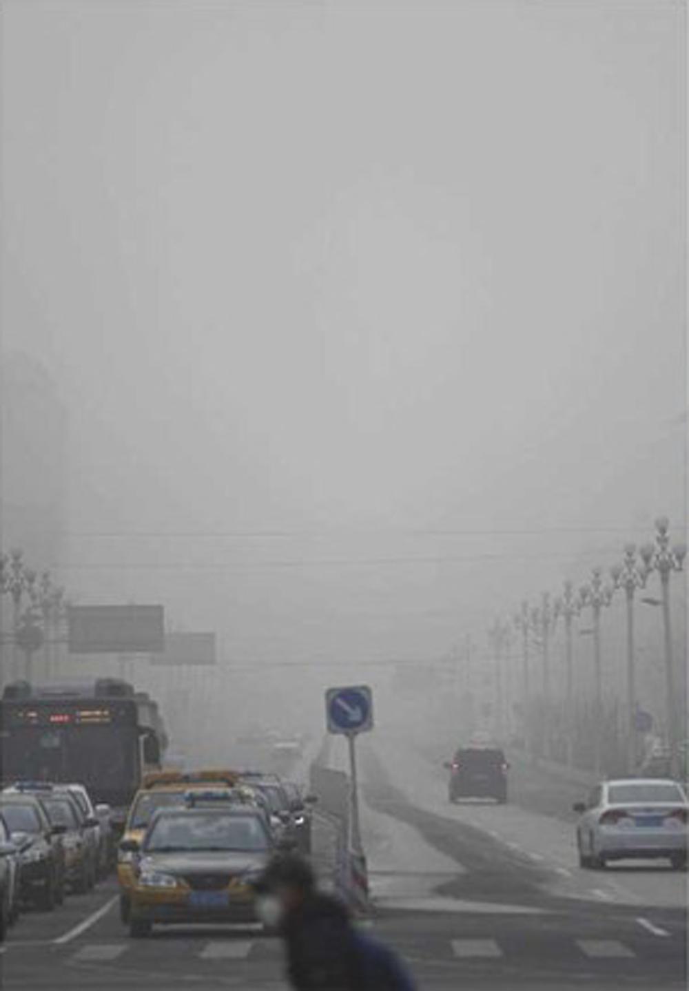 das_thetree_smogprogession5.png