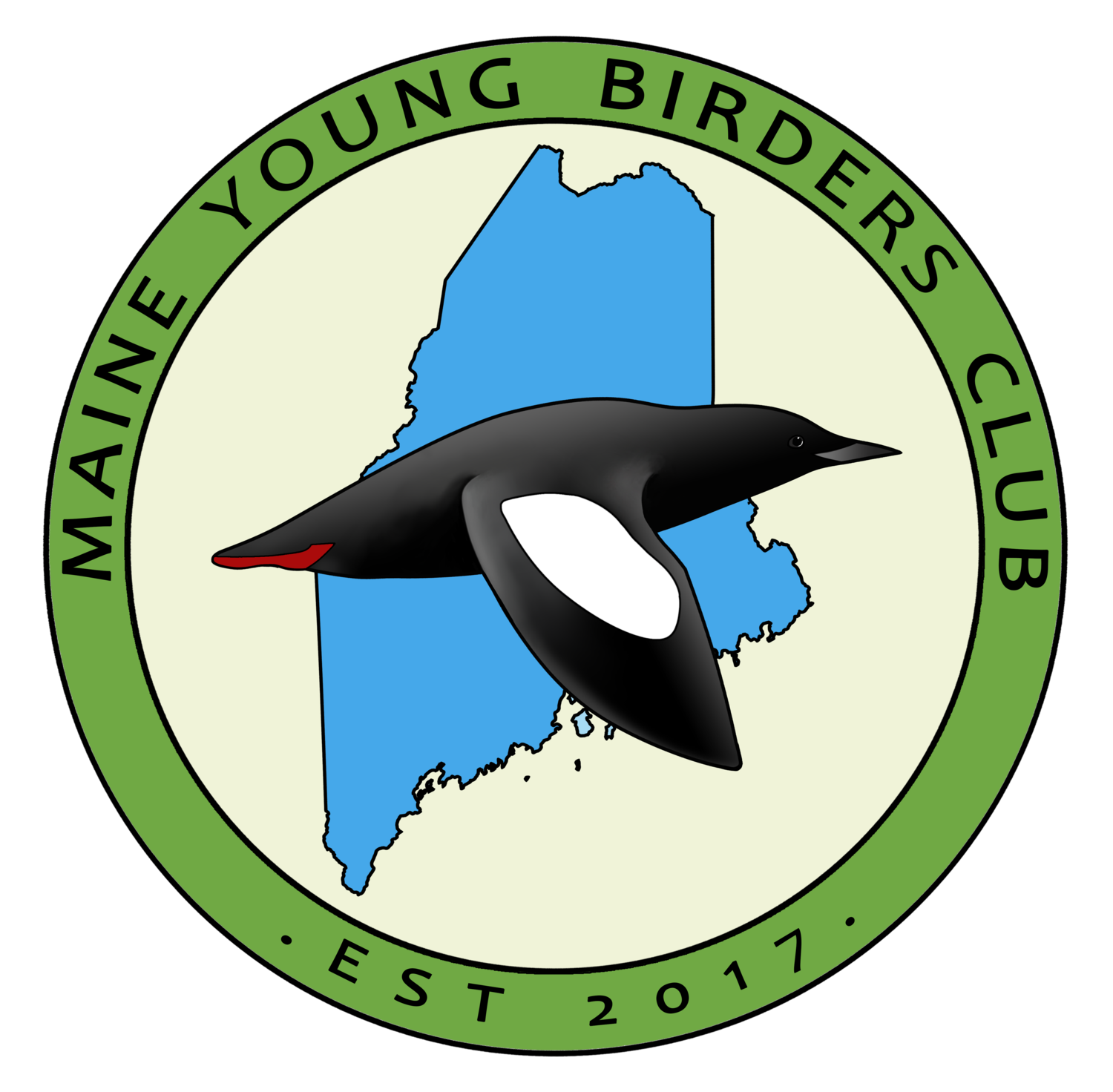 Maine Young Birders Club