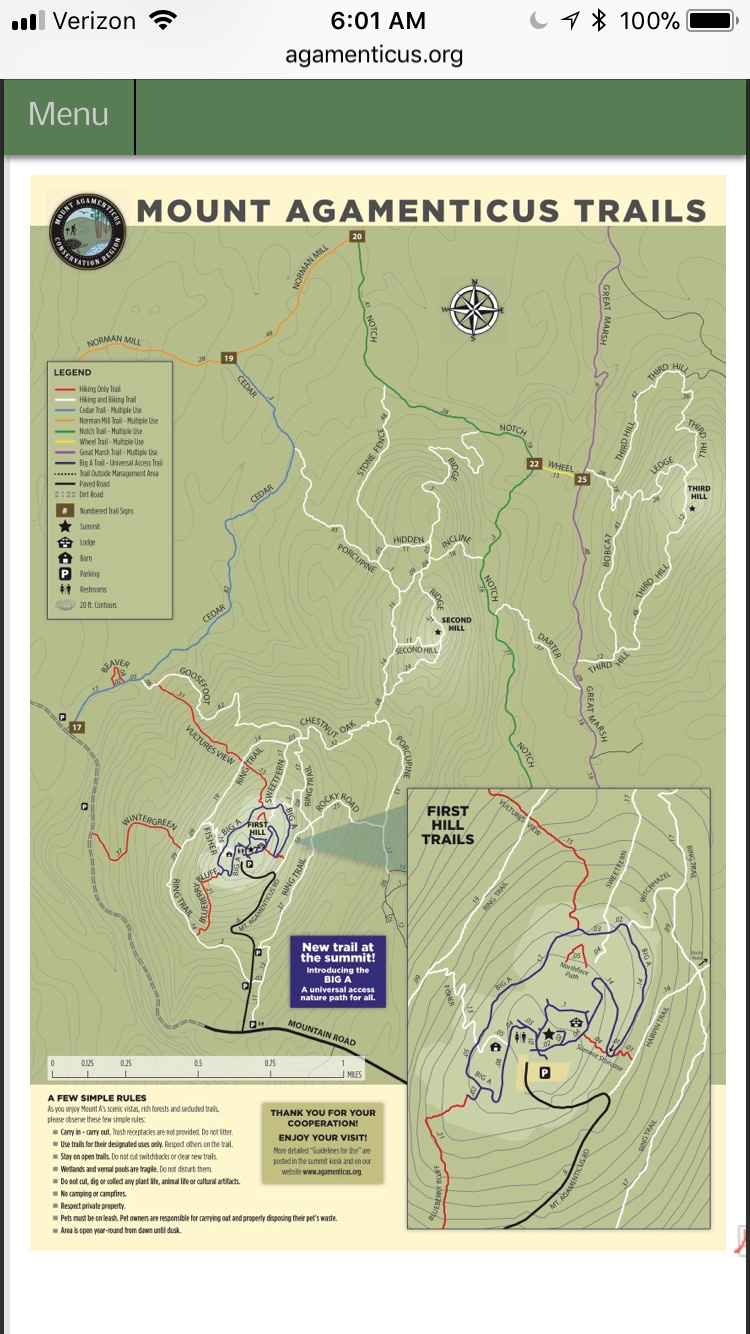 Trail system at Mt. A