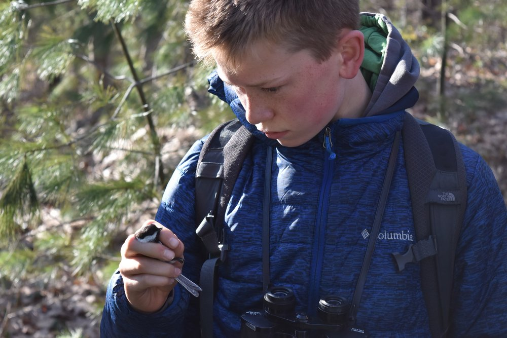 Garrett with Black-capped Chickadee
