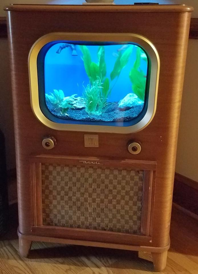 Custom acrylic TV tank