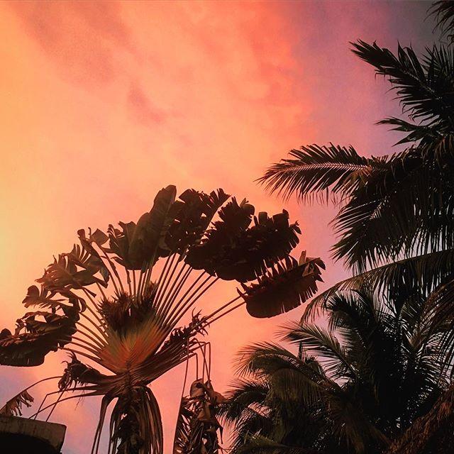 Un magnifique couché de soleil 🧡 #mexico #sayulita #voyage #couchedesoleil #magichour