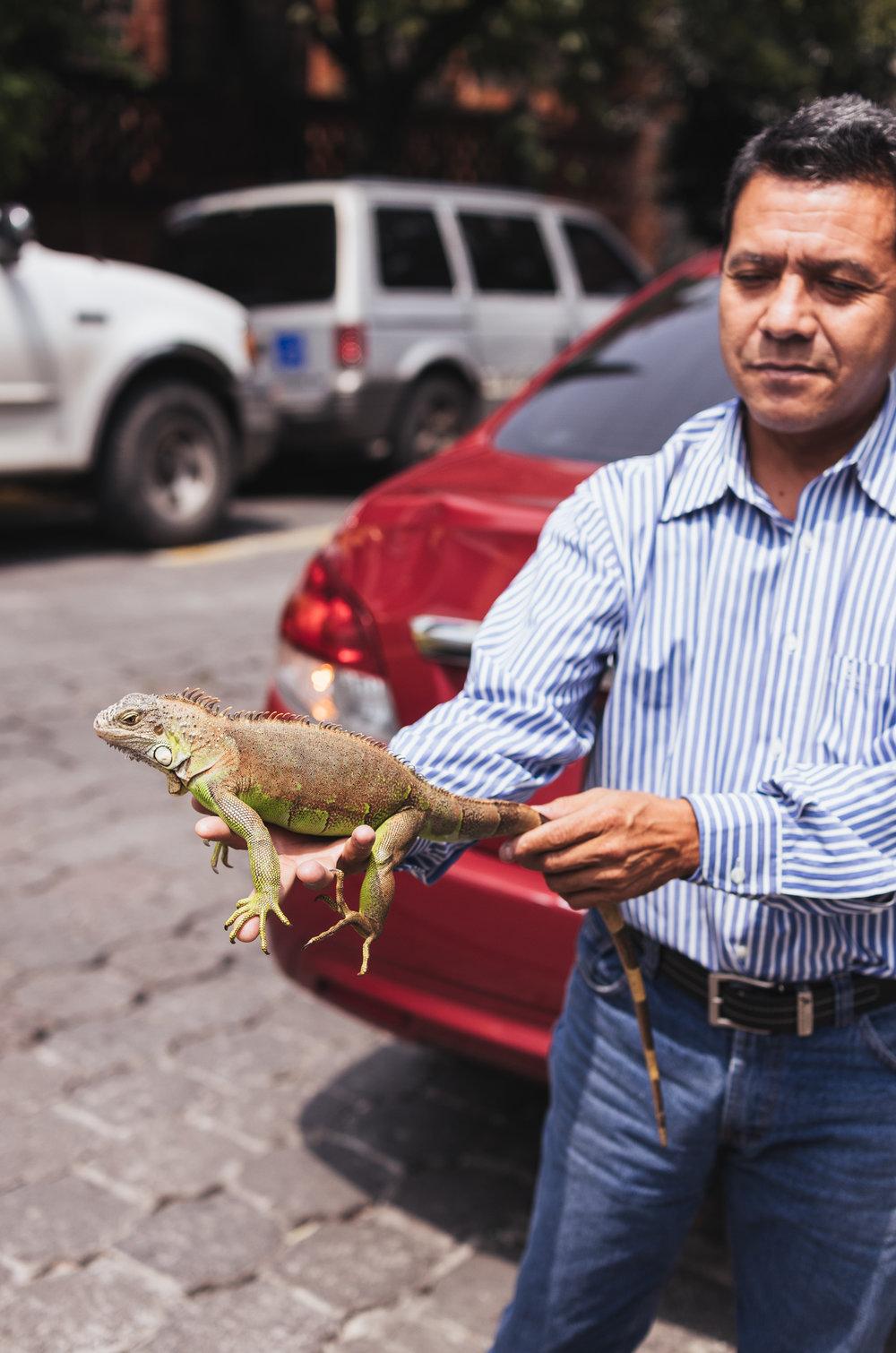 MexicoCity-Day3-Coyoacan-58.jpg