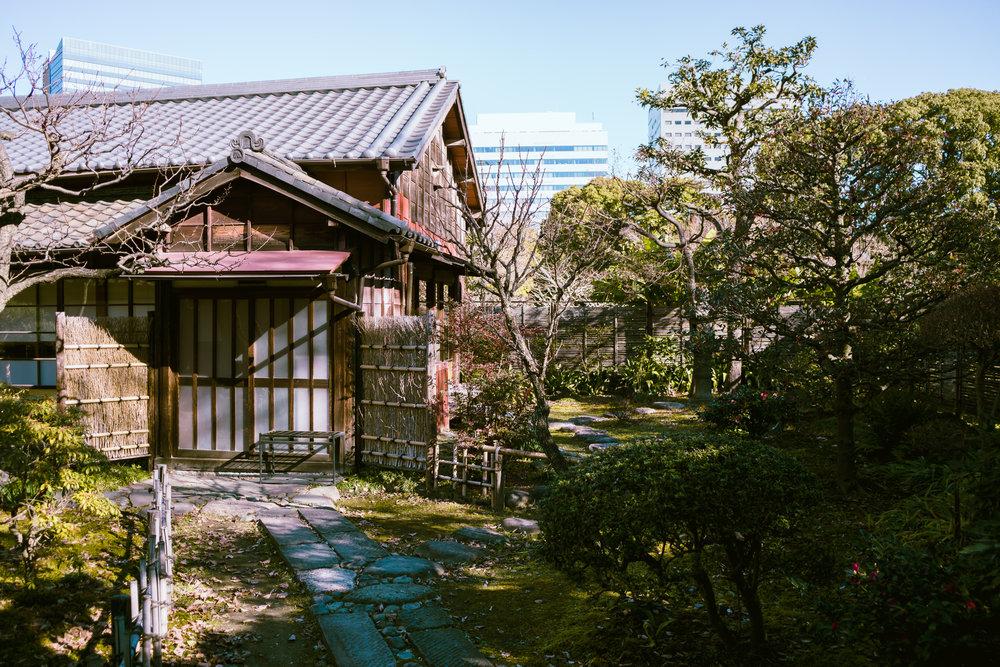 Tokyo Day 1-09606.jpg
