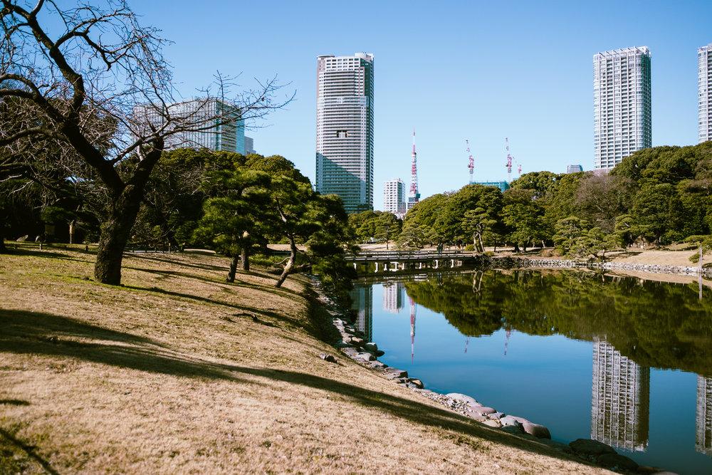 Tokyo Day 1-6.jpg