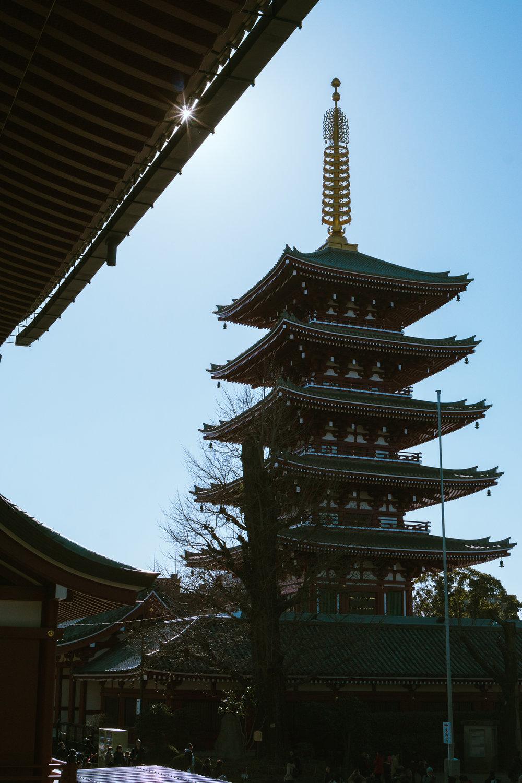 Tokyo Day 2-21.jpg