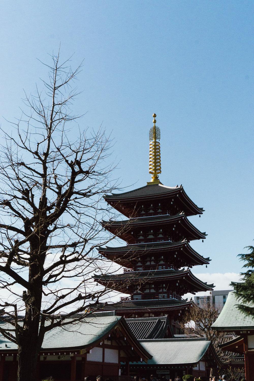 Tokyo Day 2-5.jpg