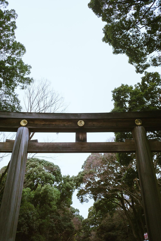 Tokyo Day 4-24.jpg