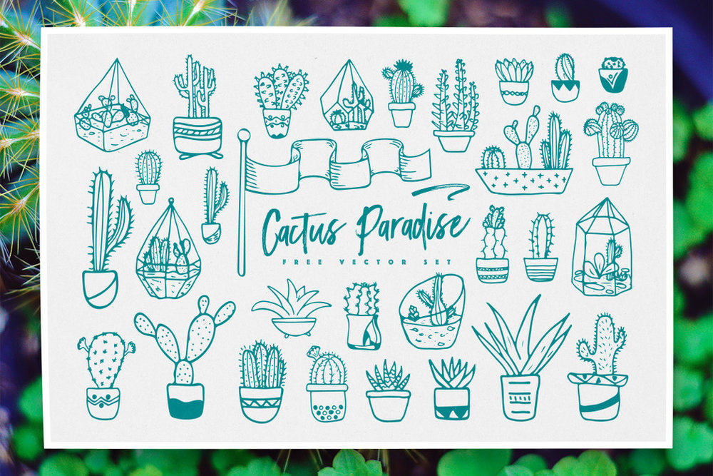 Freebie | Vector Illustrations