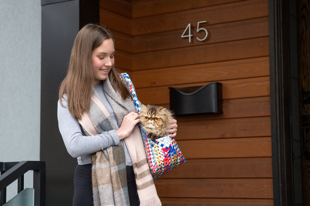 Girl holds a cat in a pet carrier