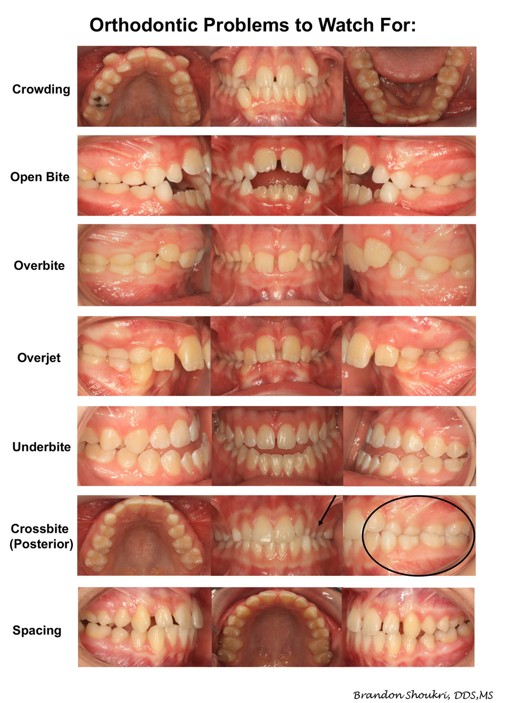Orthodontics Photo.jpg