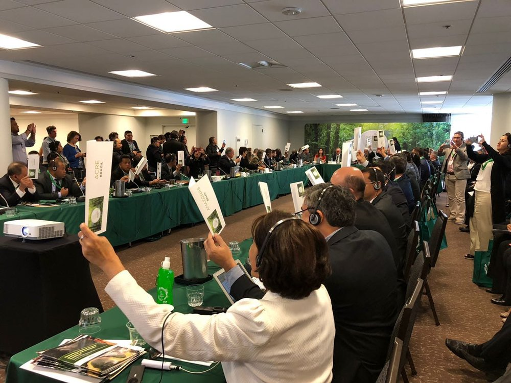 GCF members hold up cards to signify approval of the   Guiding Principles for Collaboration and Partnership Between Subnational Governments, Indigenous Peoples and Local Communities .