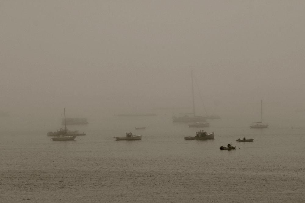 Waterfront 2.jpg