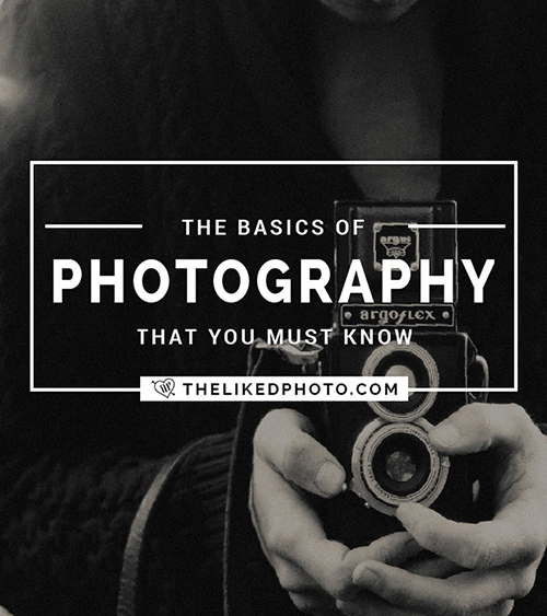 The Basics of Photography that you must know in order to be successful - Includes a free photo guide to aperture, shutter speed and ISO.