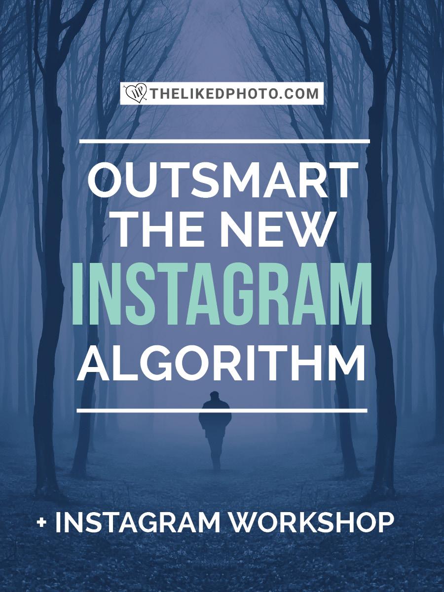 New-Instagram-Algorithm.jpg