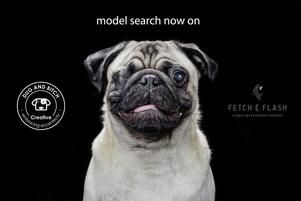 Modelsearch.jpg