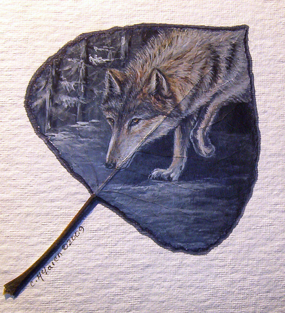 Tracking Wolf.jpg