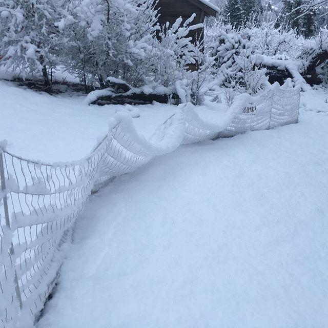 Got a little snow last night. #itbegins