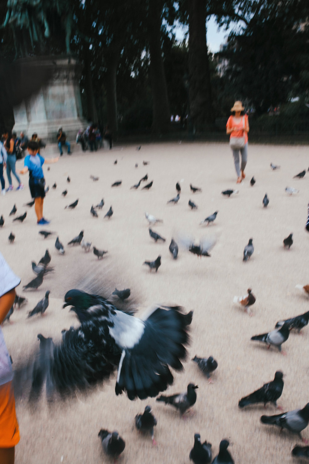 "A lady tried to make me feed the birds and I said ""absolutely not""."
