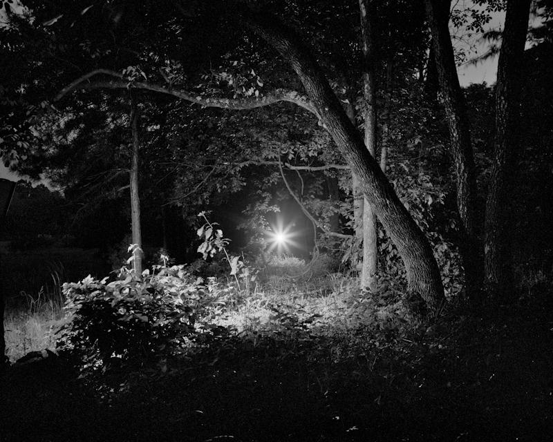 woods-light-10.jpg