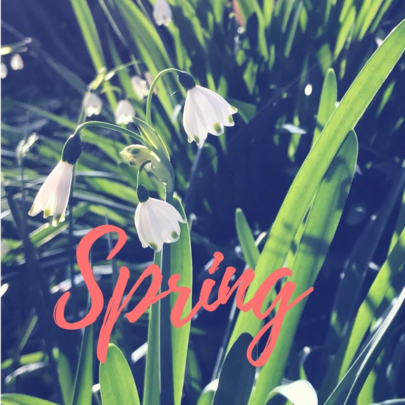Your guide to Spring in and around Melbourne