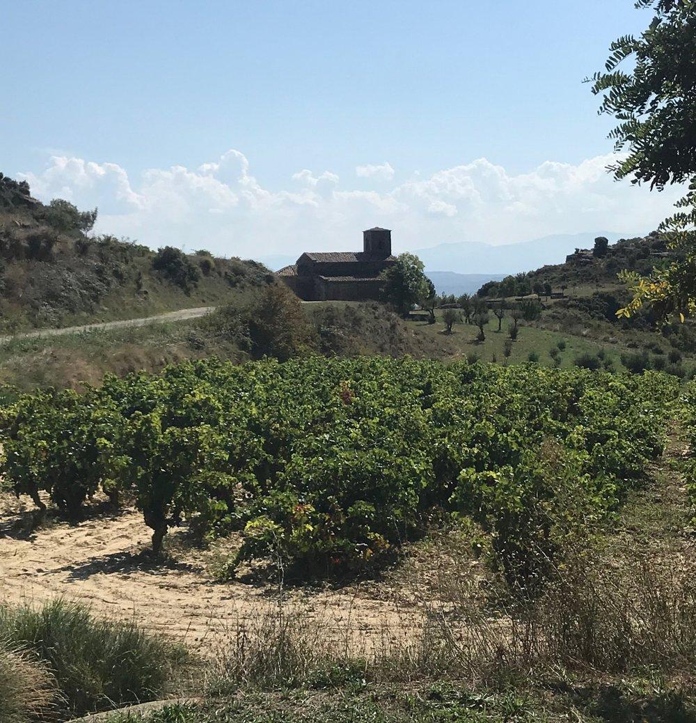 Santa Maria de la Piscine sitting serenely among the vines.