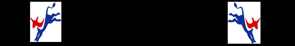new dem logo@300.png