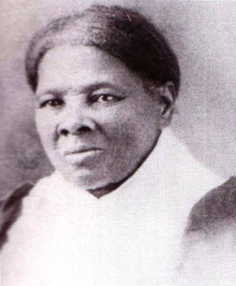 "Harriet Tubman  ""If I could have convinced more slaves that they were slaves, I could have freed thousands more."""