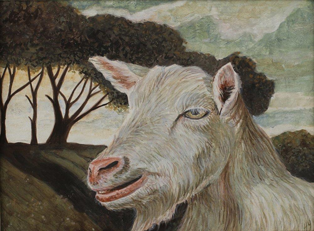 hillary_younglove_goat.jpg