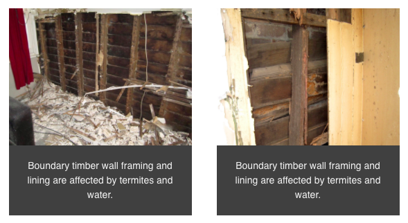 Boundary timber walls affected by termites and water