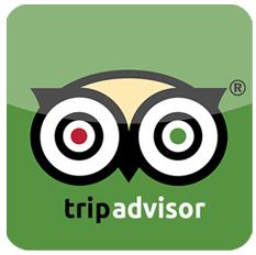 tripadvisor-icon-12006 (1).png