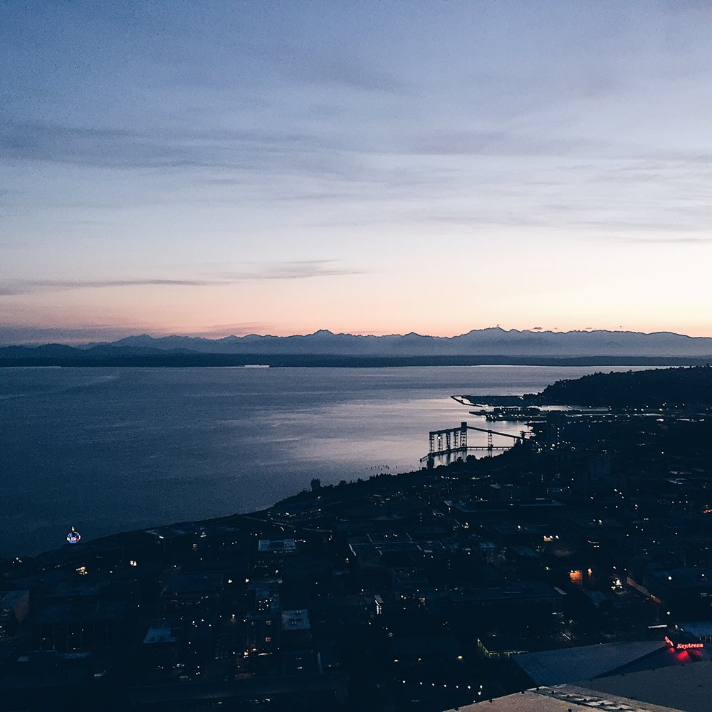 View from the Space Needle. Photo by Grace Niu Design